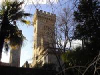 chateau et son orangerie lunel.jpg